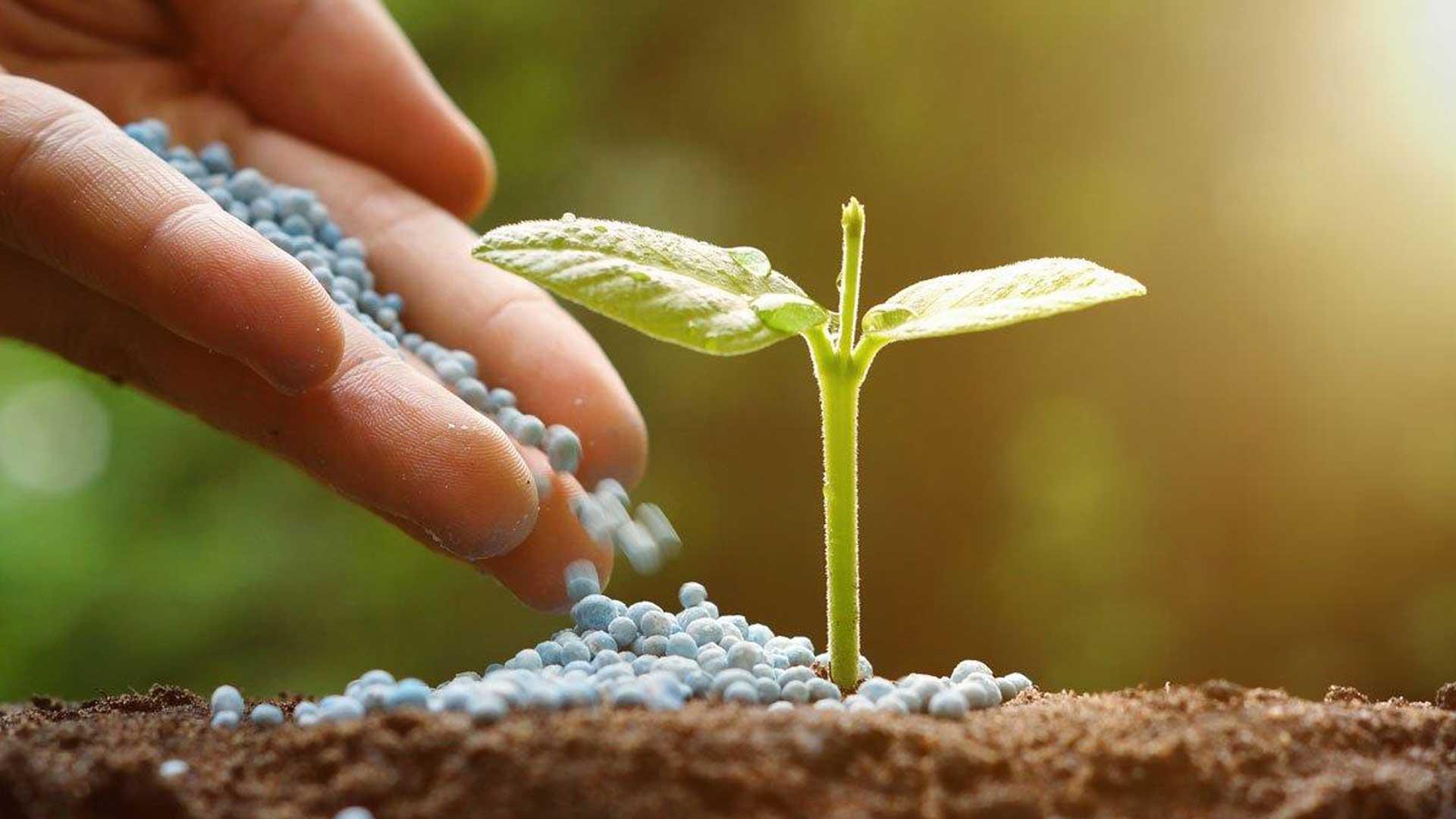 software specifico per fitosanitari